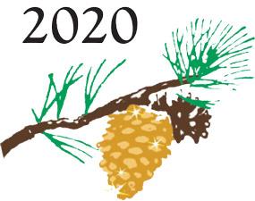 Carmel Pine Cone Golden Pine Cones 2020